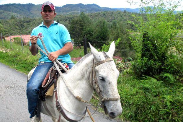 horse-alberto