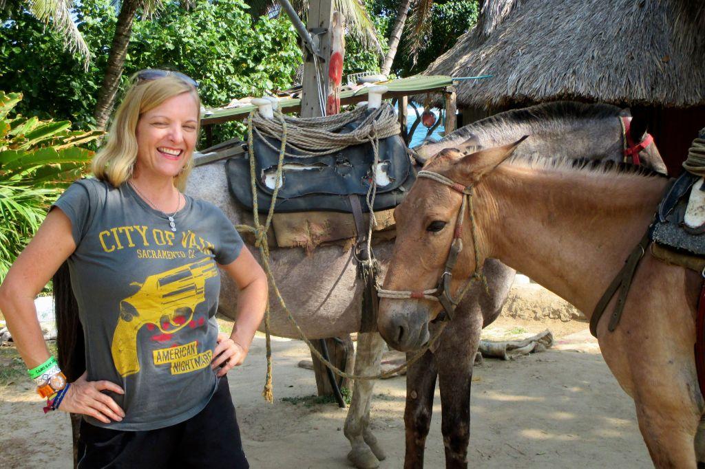 tayrona-burros