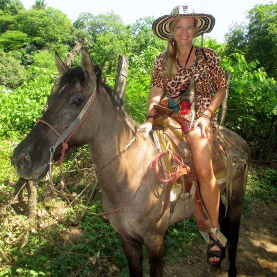 kd-caballo